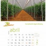 BIOSABOR- Abril
